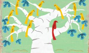 Teaching Tolerance illustration with yellow birds on a tree and only one red bird