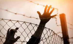 A young person's hand reaching over barbed-wire fencing.