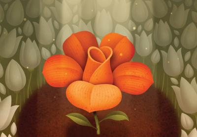 Illustration of an orange flower given space among many white flowers