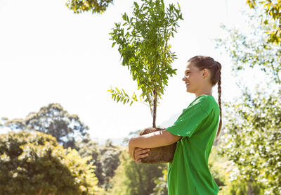 A young person plants a tree.