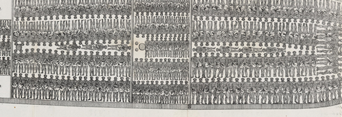 Poster of slave ship outlining how many bodies could be packed inside
