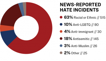 "Pie chart of ""News-Reported Hate Incidents."""